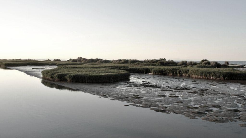 delta po nigrelli paesaggi scartati